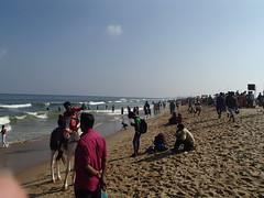印度海辺  超長砂浜 - naniyuutorimannen - 您说什么!