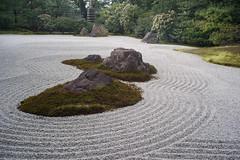 The sand garden
