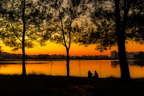 park friends sunset sky people tree nature skyline lens sunday shoreline conversation albania tirana tiranapark tiranalake canoneosrebelt4i efs18135isstm