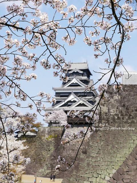 20140327山陽D2熊本-1120947