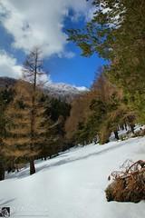 Monte Cesarotta in invernale (Monti della Laga - Abruzzo)