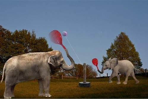 elephant swingball