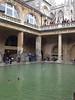 Mallard Ducks paddle atop the main pool at Roman Bath