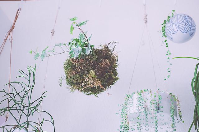 DIY plante verte, fabriquer un kokedama