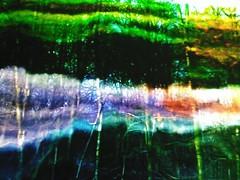 Último día para visitar o fantástico bosque de luz e glitch que Jacques Perconte instalou na Sala Municipal de Exposicións Palexco. Non o perdades! // Last day to visit Jacques Perconte\'s wonderful light and glitch forest at Sala Municipal de Exposicións
