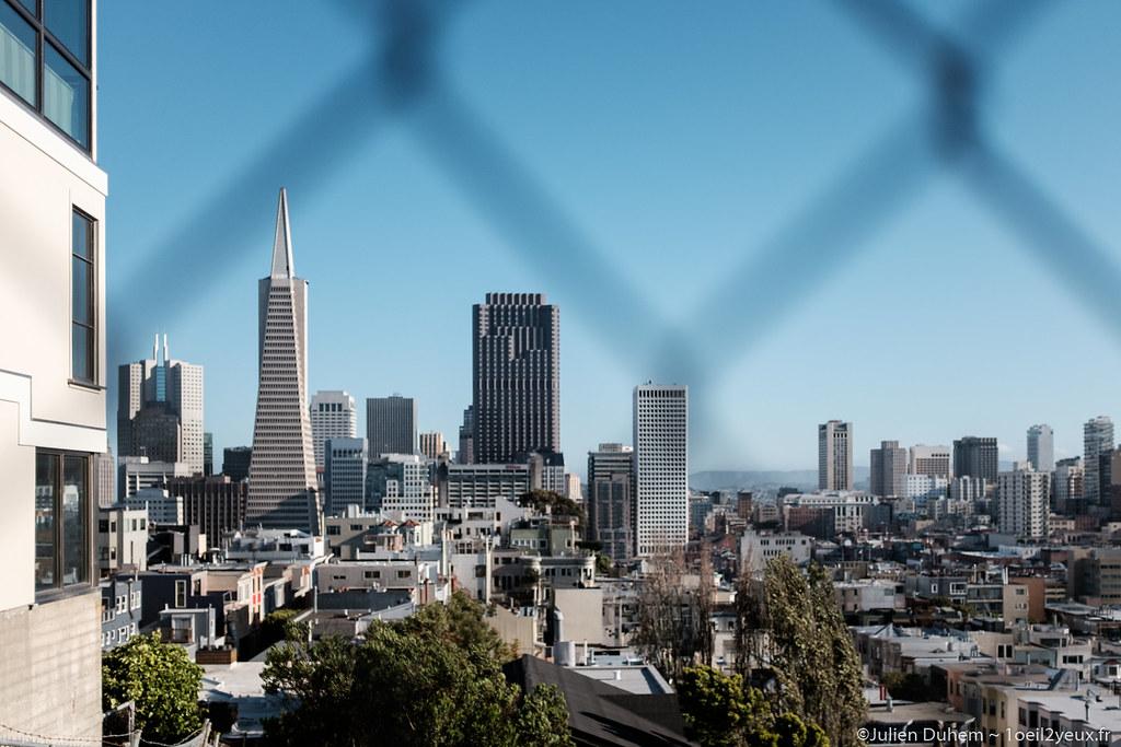 Transamerica Pyramid & SF Skyline