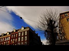 Sunny day in Amsterdam