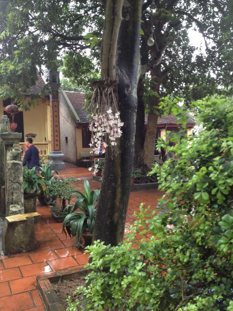 Co Phap Pagoda (4)