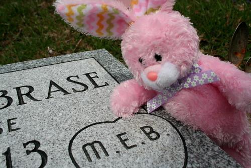 Mavis' Pink Bunny