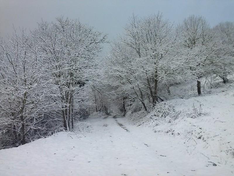 nevada de marzo