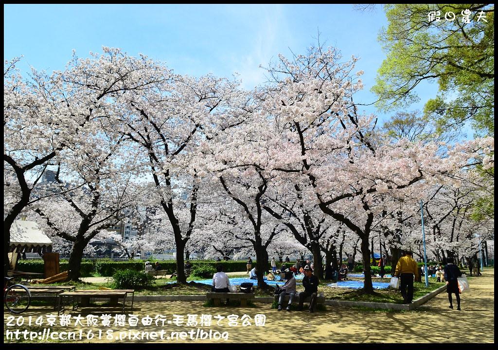 2014京都大阪賞櫻自由行-毛馬櫻之宮公園DSC_2050