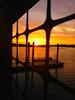 TrackHead Studios - Caged Sunset