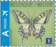 14ter MACHAON timbre