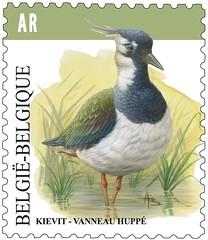 16bis Oiseau AR -Vanneau huppé timbre