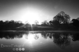 Sefton Park Sunrise