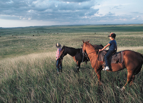 A rancher and his son survey a swath of Dakota grasslands