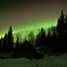 Aurora, Night 1 by cherynf