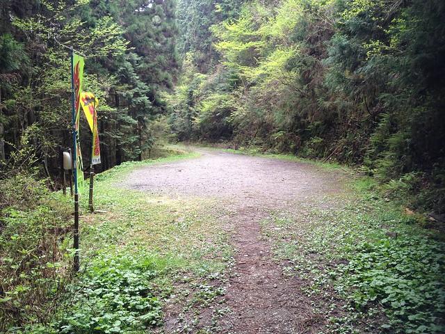 納古山 初心者コース 木和谷林道