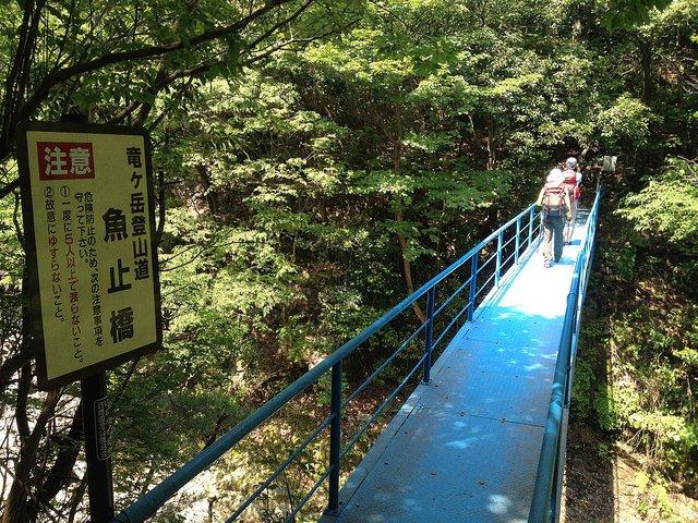 竜ヶ岳 登山道 魚止橋