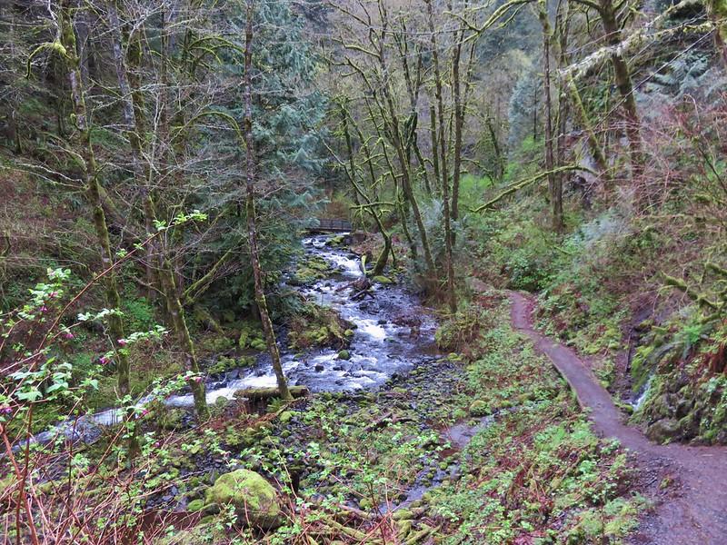 Moffett Creek