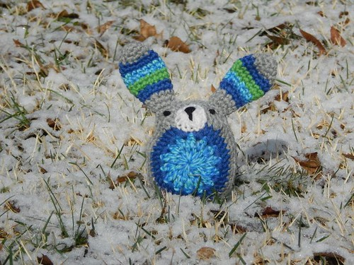 Wee bunny in snow