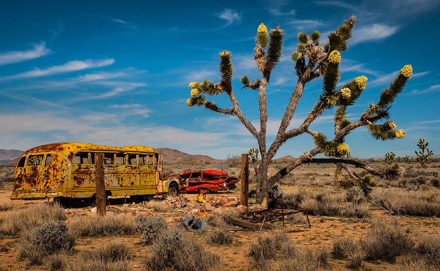 Bus on the Mojave Road