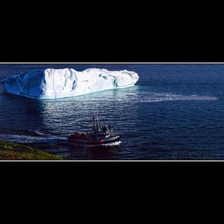 Iceberg Alley...