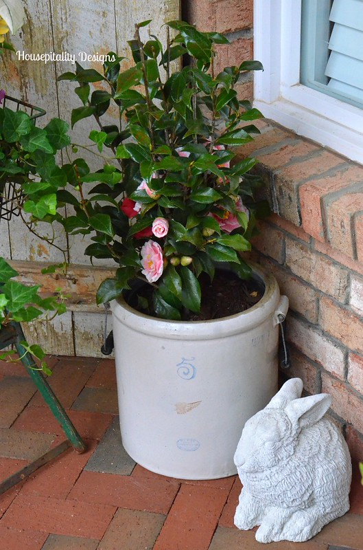 Camellia/Red Wing Crock-Housepitality Designs