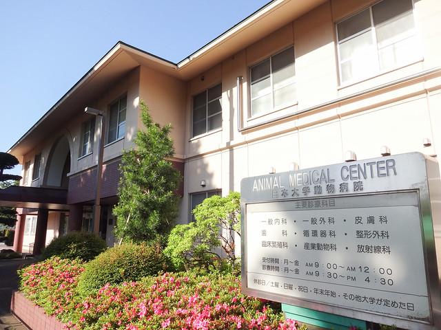 Photo:Nihon University Animal Medical Center By Dick Thomas Johnson