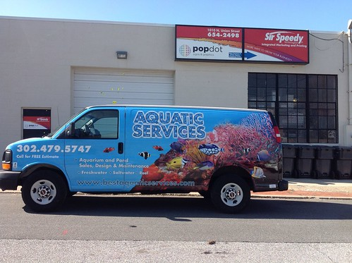 Vehicle Wraps, Graphics, & Installation