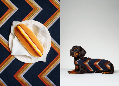 Dog_02_the_Gourmand