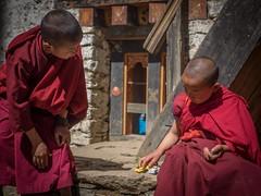 Gasa Dzong monks
