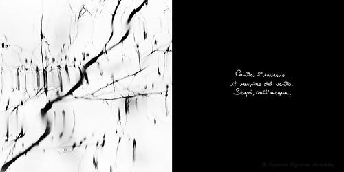 Calligrafie d'Anima (2)