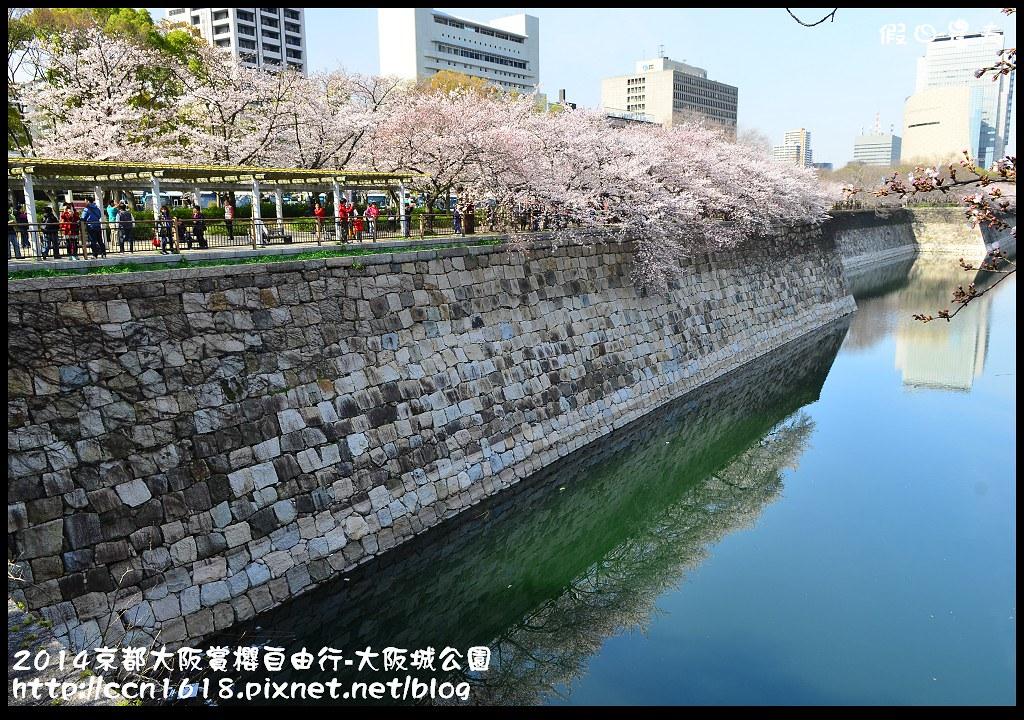2014京都大阪賞櫻自由行-大阪城公園DSC_1743