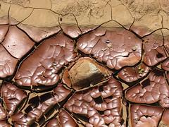 Rusty Mud