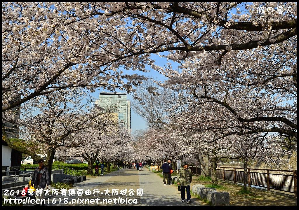 2014京都大阪賞櫻自由行-大阪城公園DSC_1725