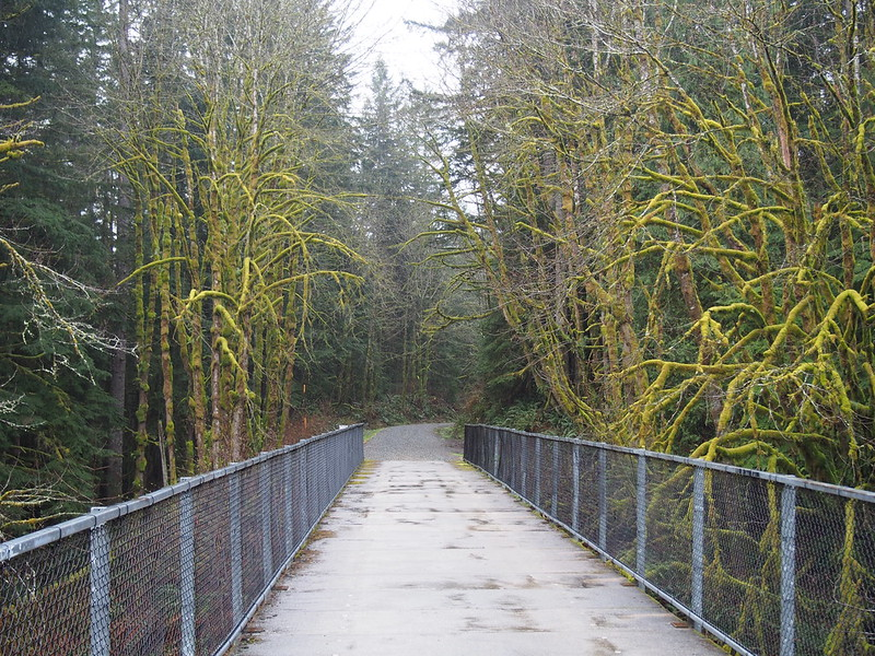 Snoqualmie Valley Trail to Rattlesnake Lake: OLYMPUS DIGITAL CAMERA