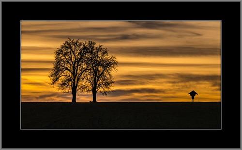 abend bad bäume frühling abendstimmung griesbach feldkreuz