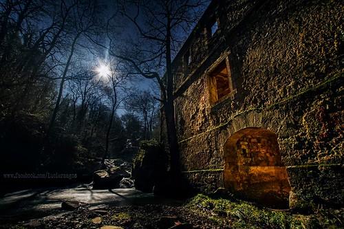 Los luciérnagos y la luna