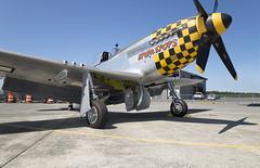 Mustang P-51_zstas