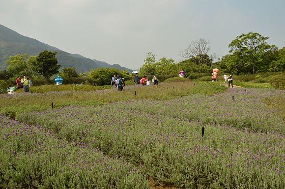 內雙溪自然中心14