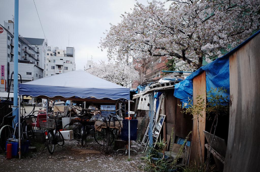釜ヶ崎の春