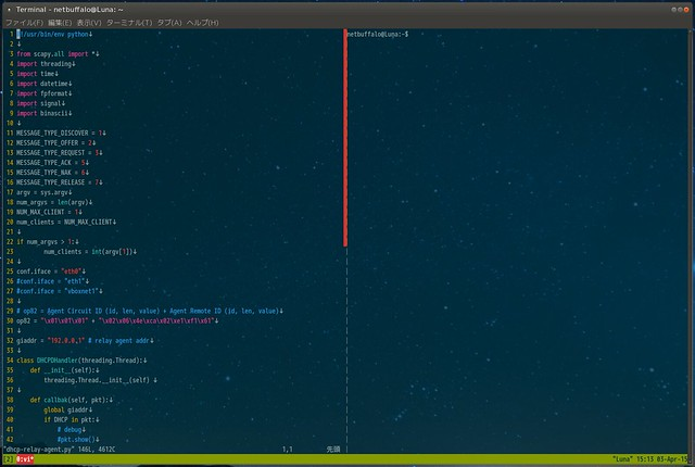 edit_python_code_by_using_tmux