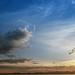 friday's sunset by mohini :: mangopowergirl.com