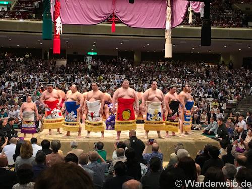 sumo (44 von 53)