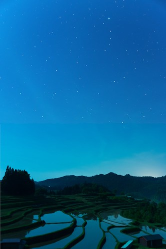 中須棚田の夜output_comp