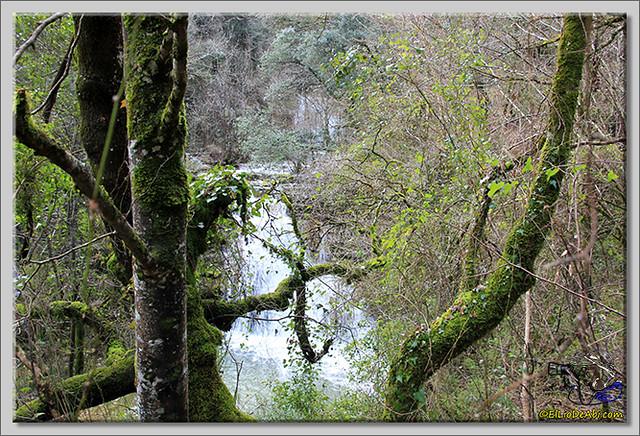 Cascada de Irús (14)