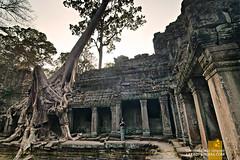 Preah Khan, Siem Reap
