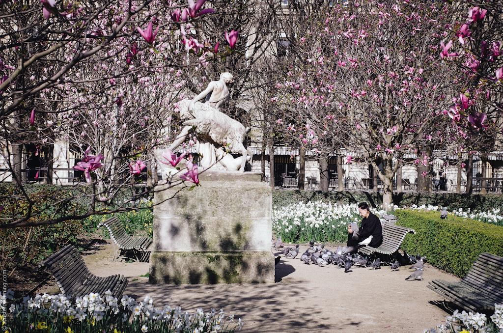 Paris, Spring at Palais Royal