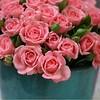 Rosas para começar a semana com muita beleza e paz! #otimasemana #bomdiafashion #bomdia #boasemana